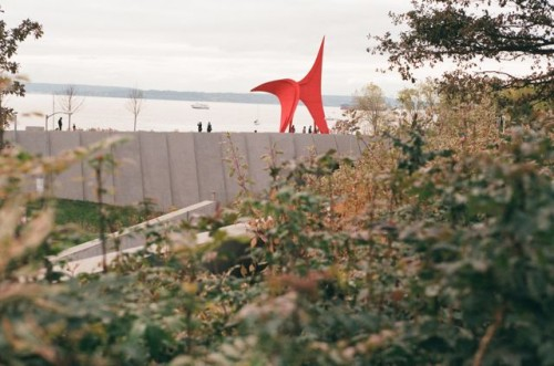 SAM Outdoor Sculpture Park
